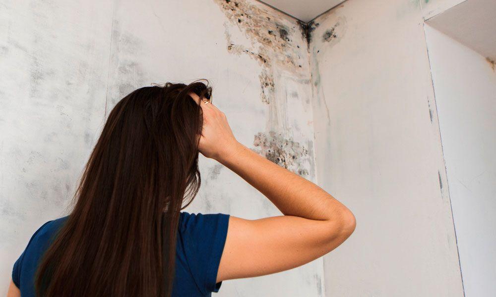 ¿Por qué debes impermeabilizar tu casa?